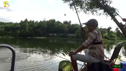 鱼塘边男子将钓竿撒下一会就被拉动,第一竿收获一条三斤大草鱼