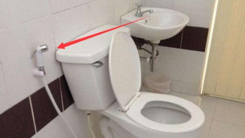 泰国卫生间的软管究竟有何用处?知道真相后,谁还敢用?