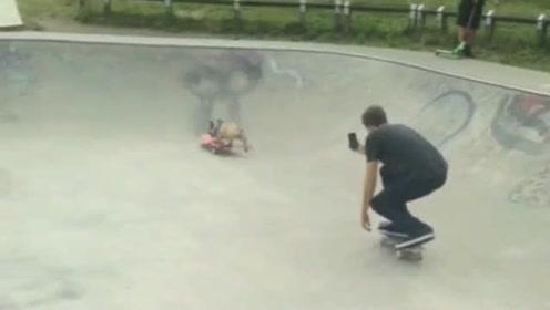 觉得自己作为一个人太浪费空气了,狗狗都会滑滑板,我什么都不会!