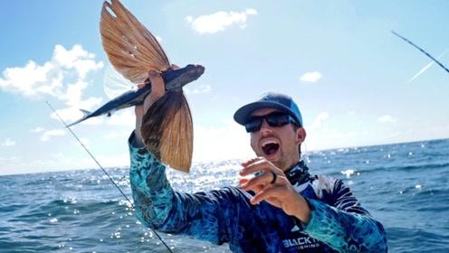 男子钓到一条会飞的鱼,长有彩色翅膀,网友:无奇不有