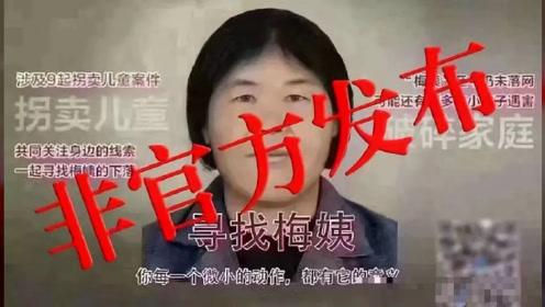 公安部辟谣!网传梅姨第二张画像非官方公布