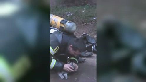 好暖!消防员跪地为火中救出的小猫输氧