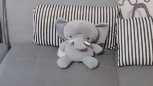 沙发有个洞,房东居然把一个大象用线连在上面,真的人才!