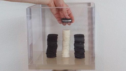 将奥利奥饼干放入真空箱中会怎样?夹心能被分离吗?一起来看看!