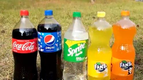 实验对比!5种汽水里放入曼妥思糖果,会有什么不同?