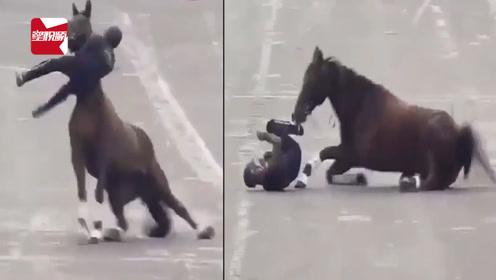 """墨西哥阅兵:骑兵在总统眼前""""失足"""",连人带马栽倒在地引尴尬"""