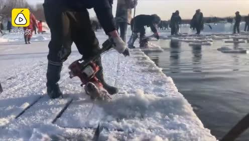 漠河300人油锯切割冰冻河面,场面震撼