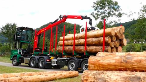 德国人是如何加工木材的?看完后,才知道什么叫先进