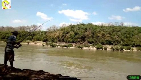 大河边男子将钓竿撒下,野货不停的上钓,这个位置真好