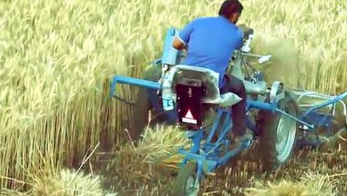 中国发明三轮式小麦收割机,收割捆扎一次成型,一小时收割6亩地