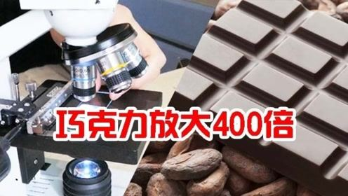 为什么狗狗不能吃巧克力?显微镜下放大来看,原来是因为它