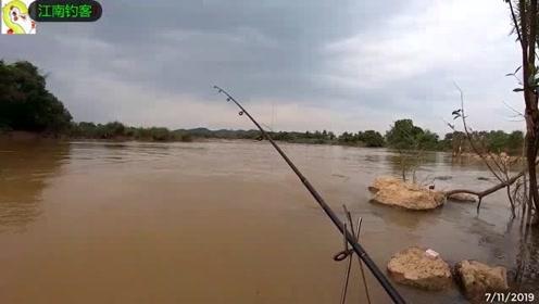 这样的大河边竟然钓不上大鱼,小的收获不少尴尬了