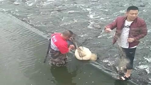 水库泄洪刚刚关了闸门,里面的大鱼可多了,村民准备开始抓鱼了!