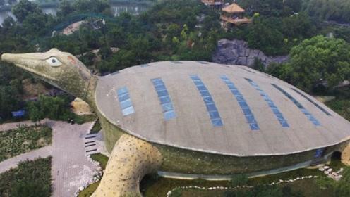 中国最奇葩的建筑,依靠一只乌龟出名,游客:造型太辣眼睛