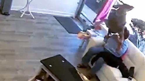 美国麋鹿撞碎玻璃闯进发廊,还趁机顺走夹发板,网友:回家烫头!