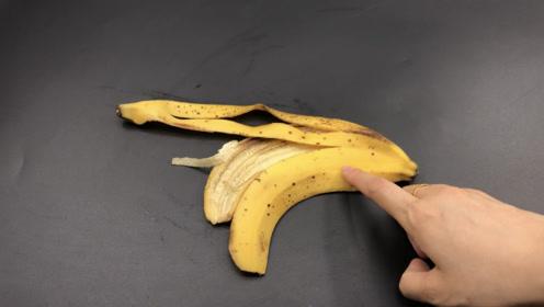 香蕉皮扔掉等于在扔钱,一根香蕉皮能做几百元的事,省钱又实用!