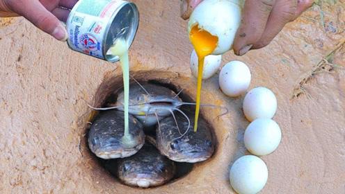 小哥河边挖两个小洞,倒入奶酪和鸡蛋,一大群小家伙钻了出来!