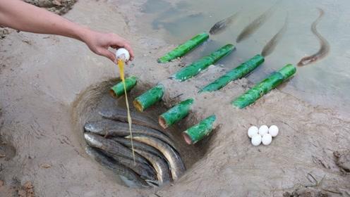 几根竹子几个鸡蛋,农村小伙奇葩捕鱼方法,没想到结果收获半缸