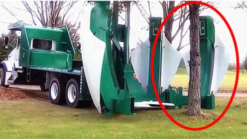 """德国制造""""移木""""神器,三分钟连根拔起一棵树,看完操作才知道多强大"""