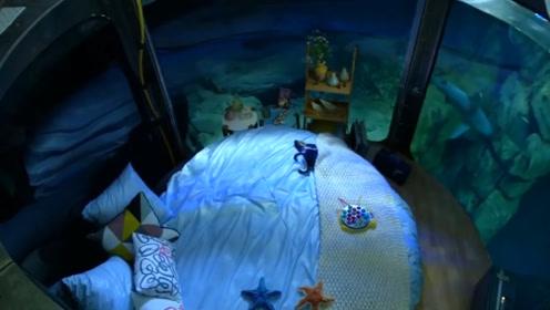巴黎建造第一个水下卧室,住客与鲨鱼同眠,再给个胆子也不敢去!