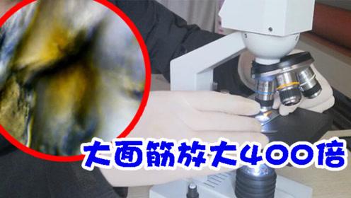 你试过用显微镜看面筋吗?放大400倍后,颠覆了你的想象