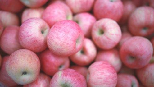 """挑选苹果有窍门,死记一个""""小机关"""",甜不甜轻松辨别,涨知识了"""
