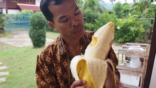 国外25米高的香蕉树,需要两人环抱,一根香蕉比胳膊还粗