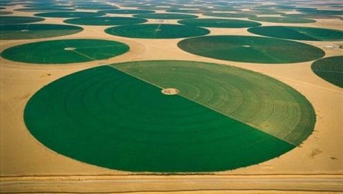 """在沙漠里种植农田,从底下300米抽水,又一项""""奇迹工程""""?"""