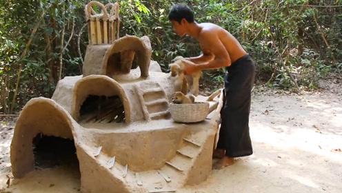 为流浪狗建造泥房,最简单的豪华别墅,人看见都羡慕!