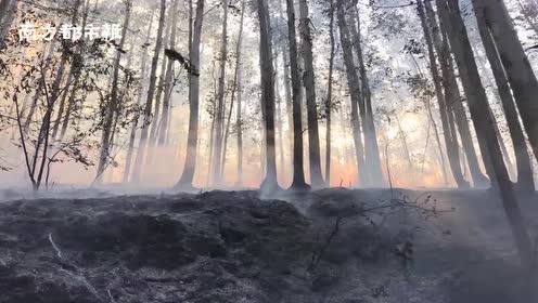 致敬逆行者!江门森林消防23人驰援佛山救火