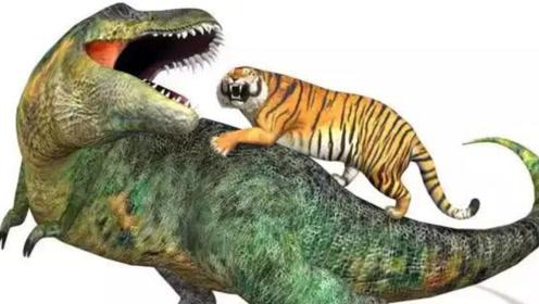 """把老虎""""传送""""回白垩纪,当它与霸王龙相遇,老虎能存活吗?"""