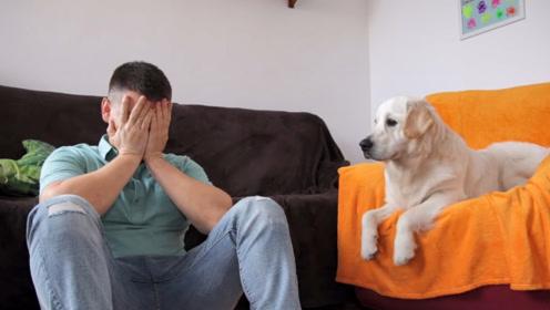 在狗狗面前突然失声痛哭,狗狗会有什么反应?这场景好暖心