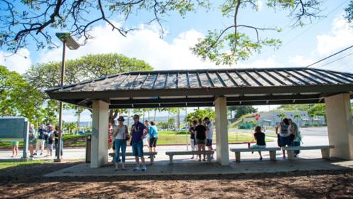 """为何夏威夷州府要叫""""檀香山"""",只因在240年前,这名是中国人给起的!"""