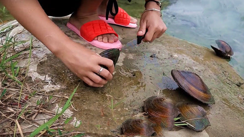 女子在河里捡到几只河蚌,撬开后看傻众人,这下赚大发了!