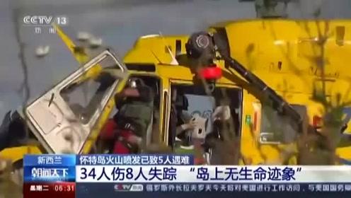 新西兰通报火山喷发应急情况 死伤者中有2名中国人
