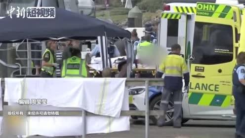 新西兰火山喷发致至少5死伤者和失踪者中有中国游客