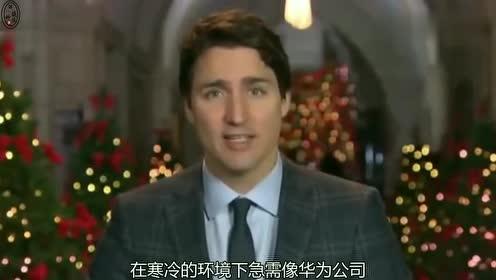 加拿大终于悬崖勒马,不再随波逐流,开始主动拥抱华为跟其合作