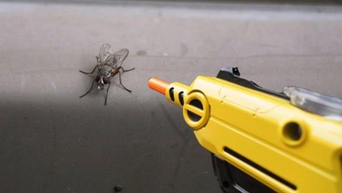 """老外发明""""苍蝇终结者""""!一枪一个准,网友:苍蝇哭晕在厕所!"""