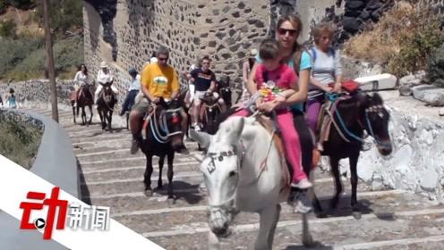 希腊一旅游岛将禁止骑驴观光:违者最高罚23万元
