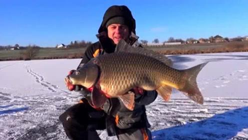 在冰湖上面凿开一个冰洞,接连钓到大鲤鱼,这条至少有3斤!