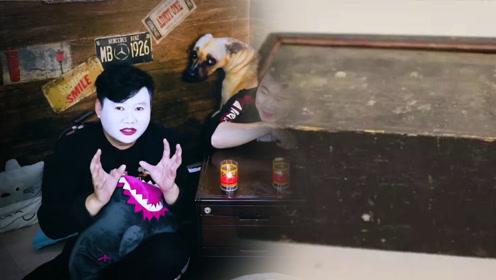 搞笑短故事:老吴家里有个神奇的木盒,可以吸引小动物!