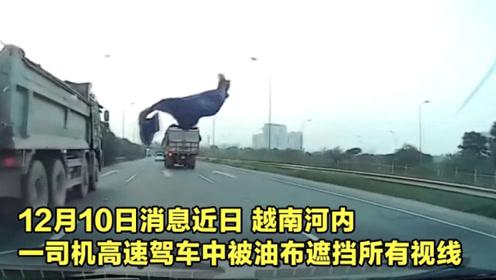 """太惊险!小车高速行驶时被""""飞来油布""""遮挡视线,8秒内绝地求生"""