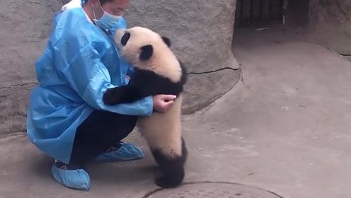 前半段的亲子时光好温馨,后半段猝不及防的熊抱,看完忍住别笑