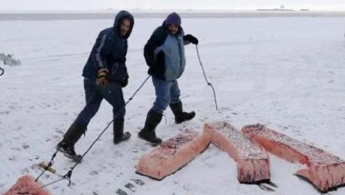 极寒之地,生活在零下60度的雅库特人,他们是靠什么食物生存呢?