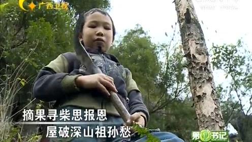 8岁励志小孩砍柴为生,屋破深山徒手建新房