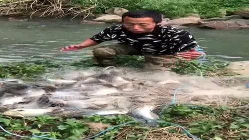 农村大哥户外搞笑捕鱼,一网能捕几十斤鱼,看着太过瘾了