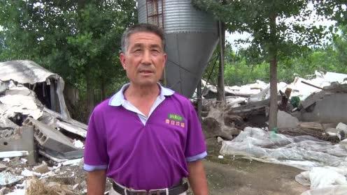 平邑一场暴风雨后一个规模化养鸡场成废墟近200万打水漂