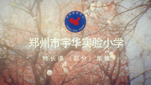 郑州市宇华实验小学特长课动态展示