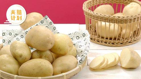 土豆保鲜不用放冰箱 只需学会这三招