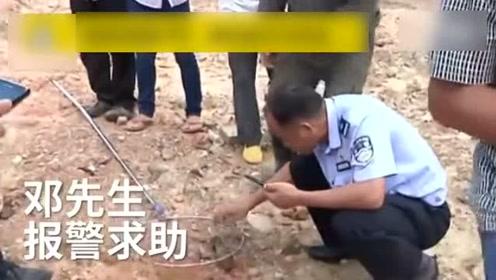 """广西男子钓上一条""""大鱼"""" 仔细一看吓坏"""